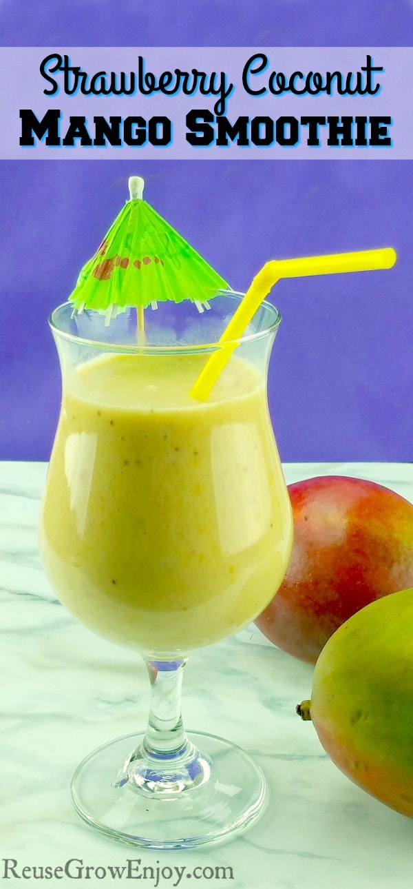 Do you enjoy a good smoothie? They really can be a healthy meal on the go. If you are looking for a new recipe to try, check out this yummy Strawberry Coconut Mango Smoothie!