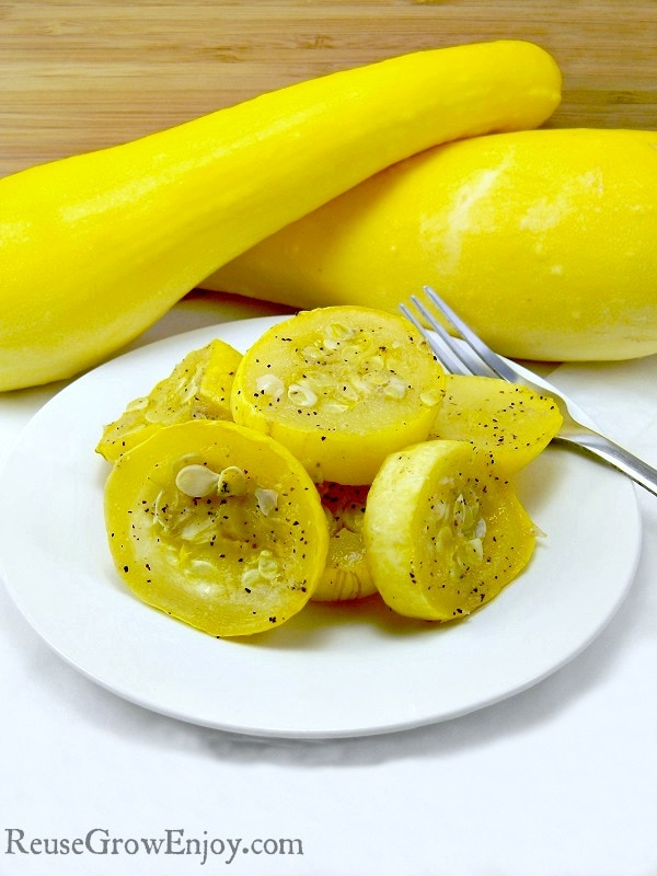 Are you growing summer squash? If so, you have to check out this super yummy and very healthy Summer Squash Recipe! It is so easy to make ANYONE can do it!