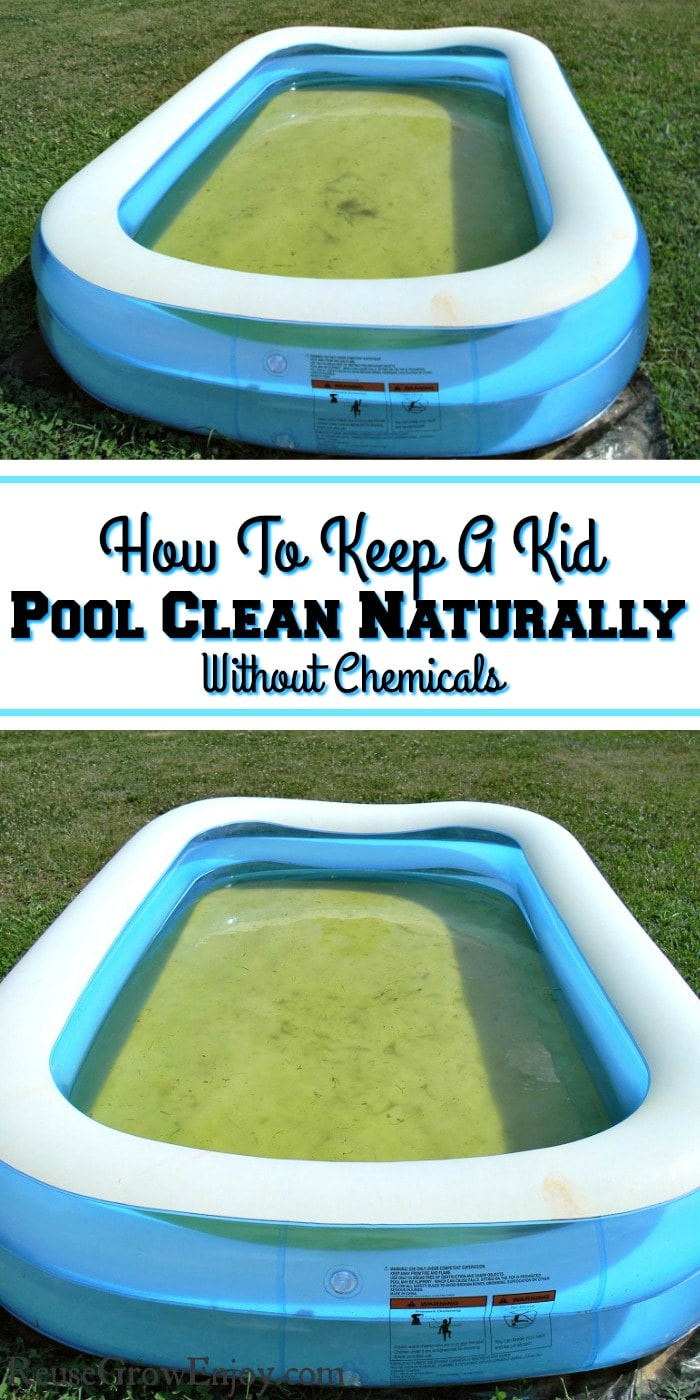 Picture of two blue and white kids pools with dirty green water. Text overlay in middle that says How To Keep A Kid Pool Clean Naturally Without Chemicals.