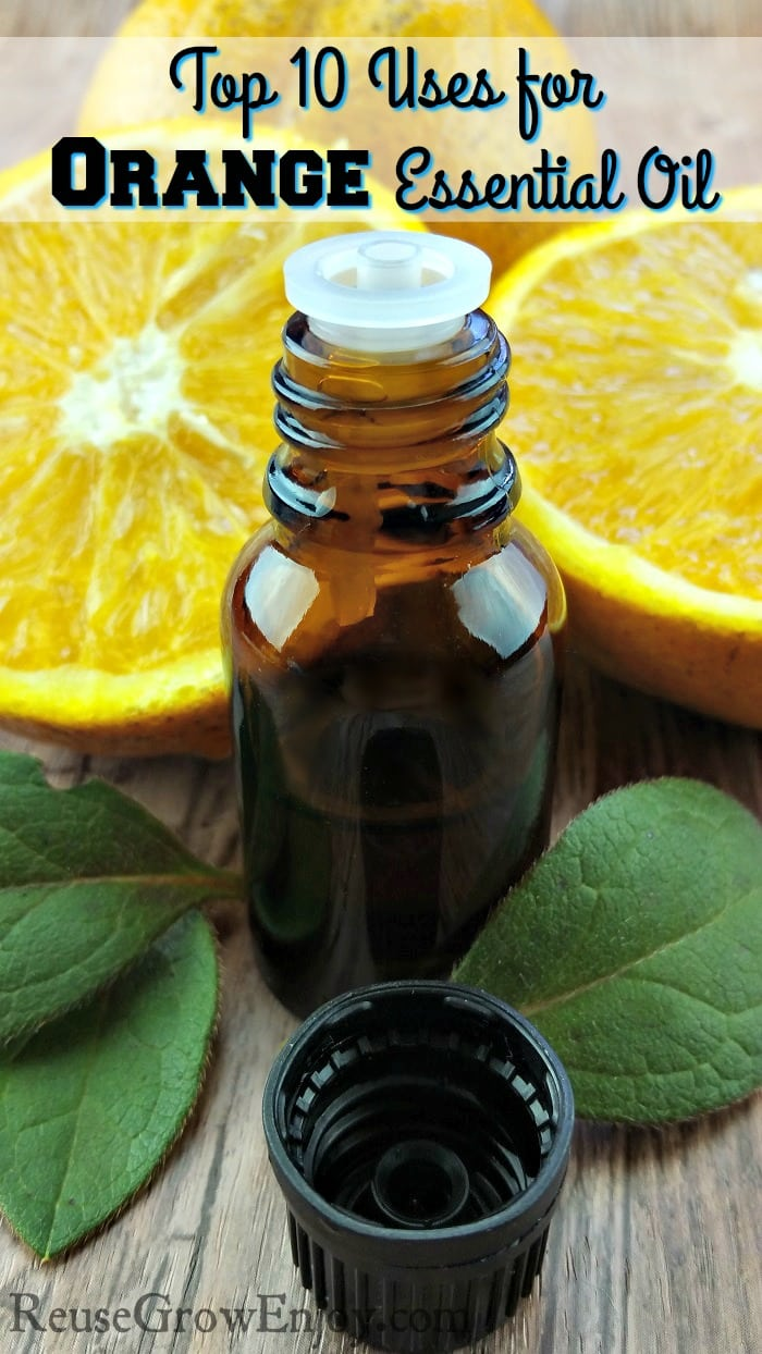 Wanting to try orange oil and wondering what it is good for? Check out these Top 10 Uses for Orange Essential Oil!