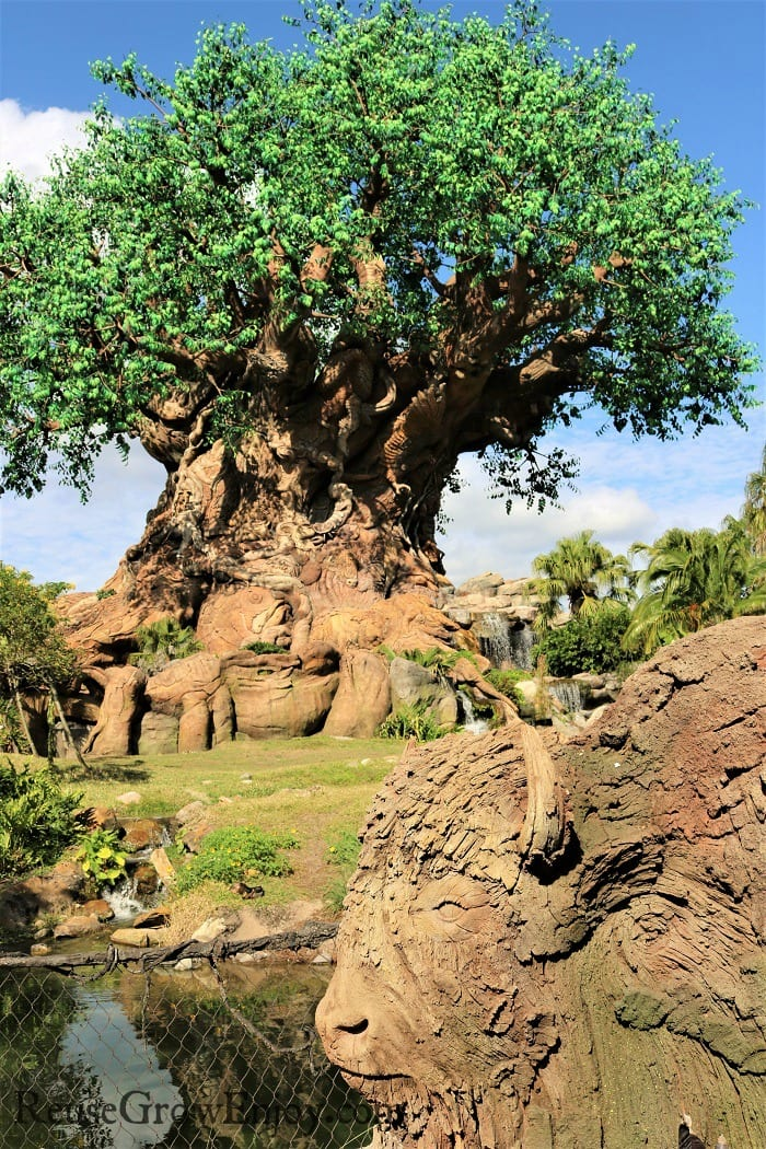 The Tree Of Life at Animal Kingdom. One of the top 8 reasons to visit with the family.