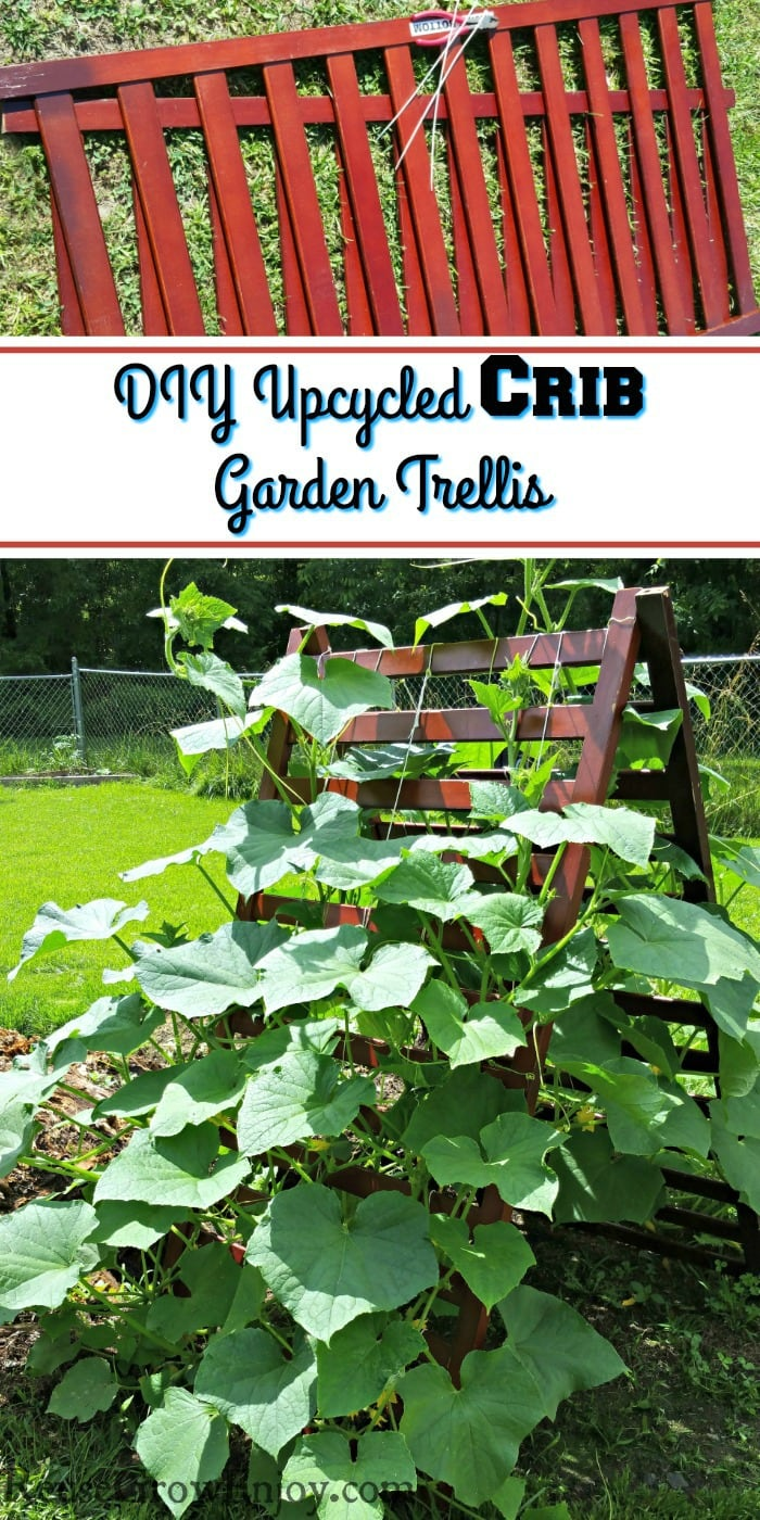 Crib rails at the top and they are made into a garden trellis at the bottom with plants growing up them.