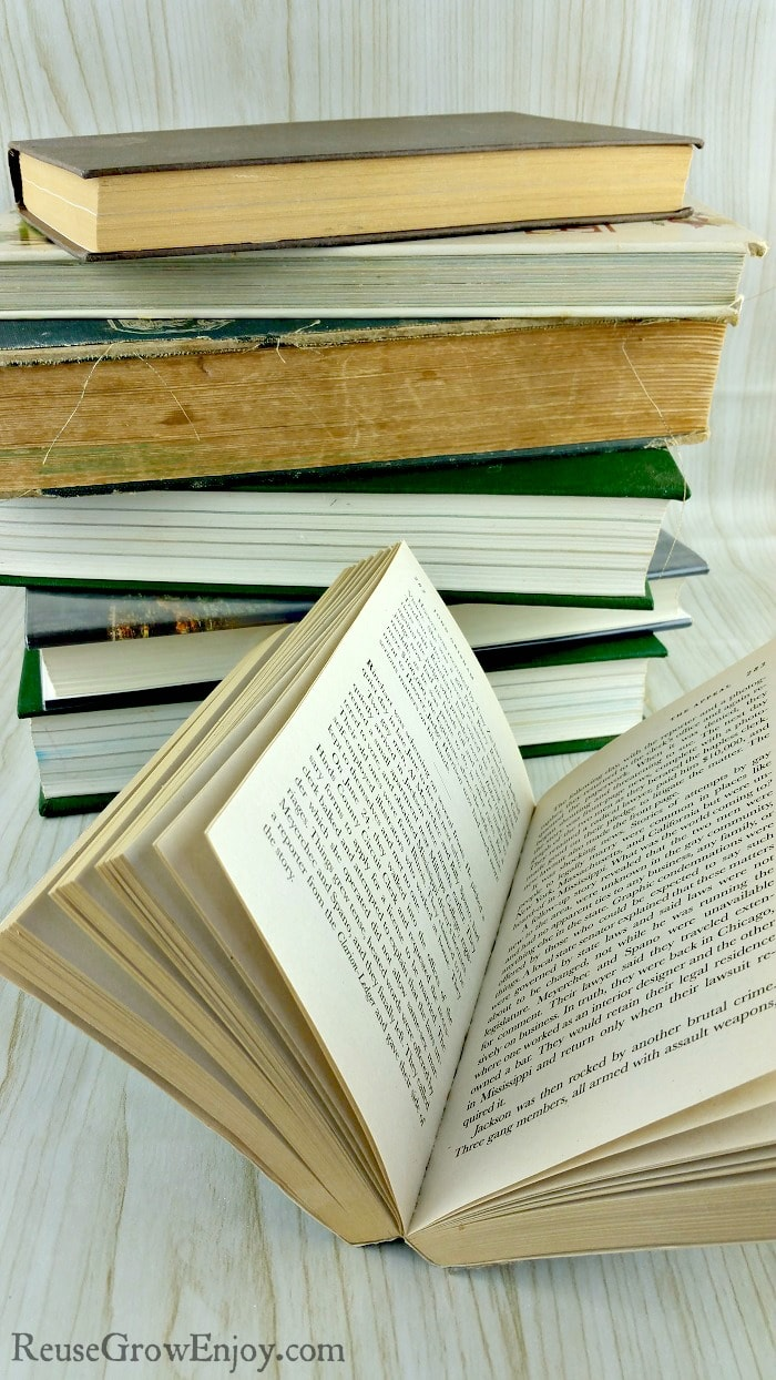 No matter where we travel, where we look, our eyes can typically spot a book. The beautiful thing about books is that they are timeless. Plus there are so many ways to reuse and recycle books and I am going to share a few ideas on how to do that!