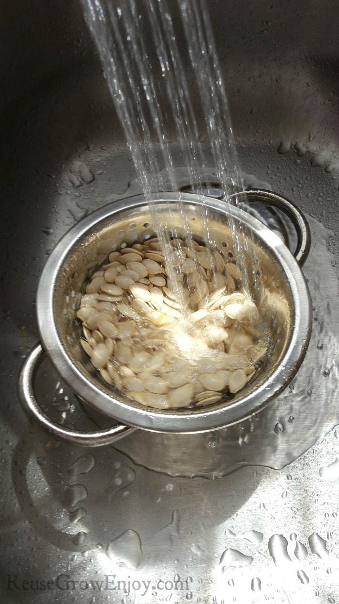 Colander in kitchen sink with running water showering over pumpkin seeds.