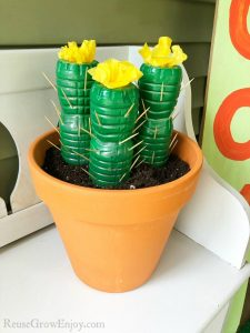 Water Bottle Cactus Craft