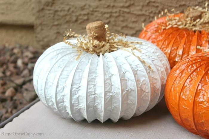 White duct pumpkin with orange ones on the side.