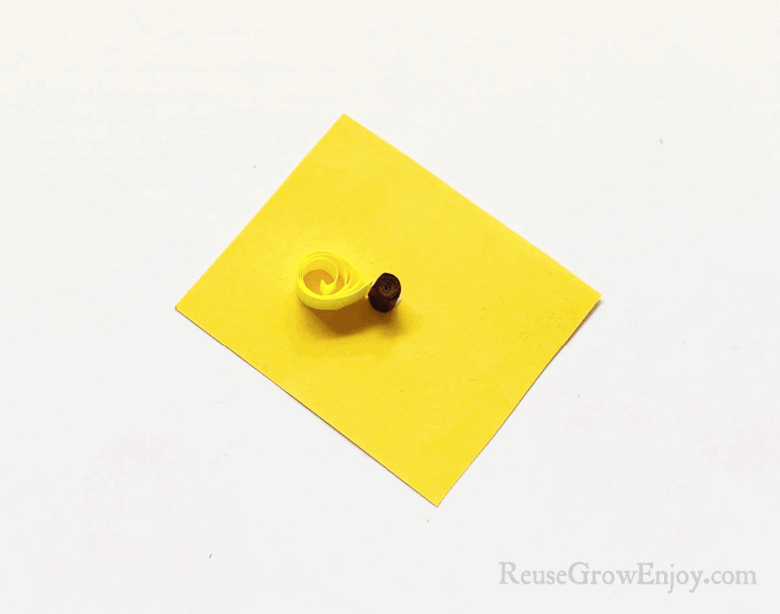Yellow coiled petal glued touching brown coil on yellow paper