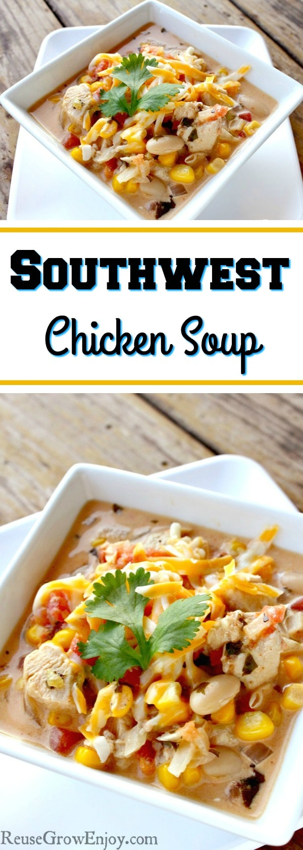 o you ever get sick of eating the same old soups? If you are looking for something different for your taste buds, I have a recipe you have to try. It is a recipe for Southwest Chicken Soup.