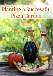 Planting A Successful Pizza Garden