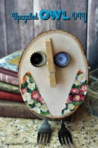 Upcycled Owl DIY